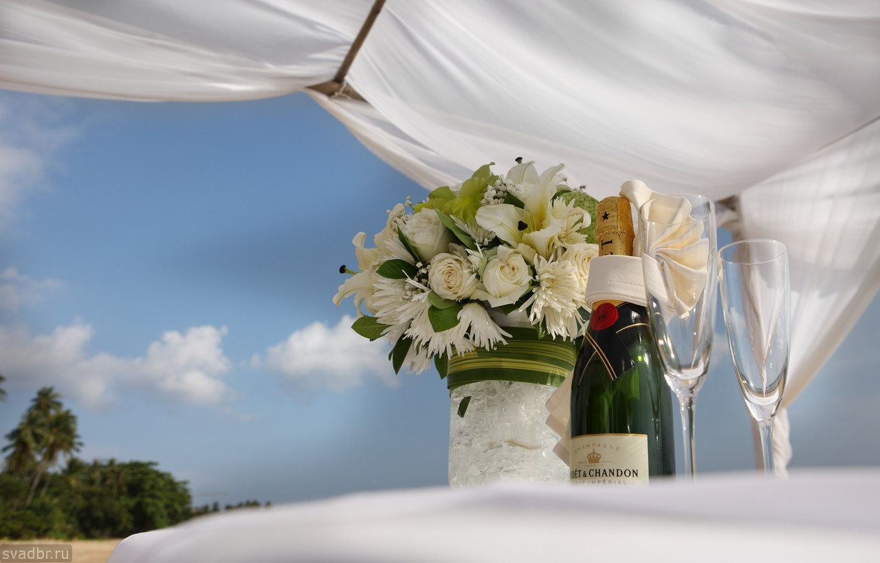 100 - Свадебные фото