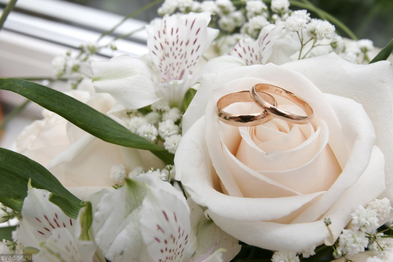 132 - Свадебные фото
