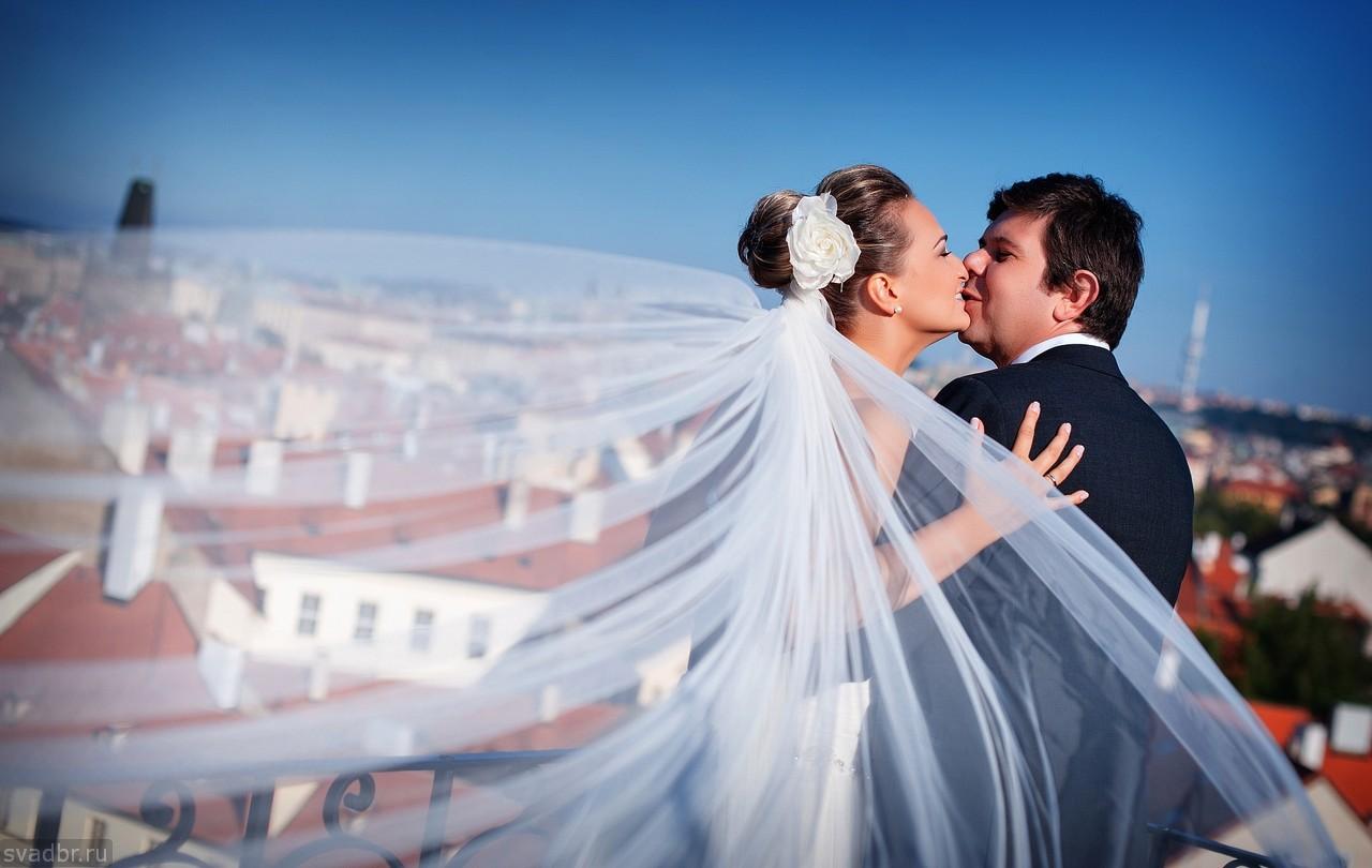 53 - Свадебные фото